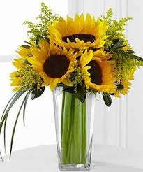 sunflower arrangements fresh sunflower arrangements search weddings and events