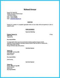 Apple Pages Resume Template Pinterest