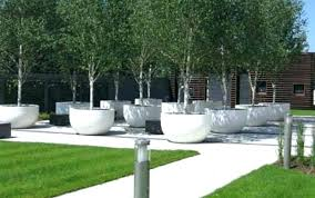 large white garden pots large pots for trees white planter