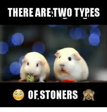 Stoner Meme - there are two types of stoners meme on me me