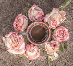 coffee and dried roses u2014 stock photo konoplizkaya 85677576