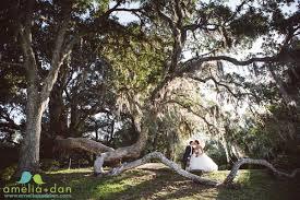 wedding venues charleston sc creative photographer charleston sc amelia dan