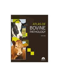 atlas of bovine pathology grupo asís store