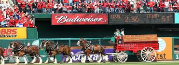 Budweiser Clydesdale Barn Clydesdales History Budweiser