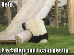 Help I Ve Fallen Meme - help i ve fallen and i can t get up zoomer lindaseccaspina