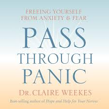 Discount Anxiety Simple Techniques To Get Rid Of Anxiety Panic Attacks And Feel Free Now Anxiety Self Help Anxiety Cure Panic Attacks Anxiety Disorder Pass Through Panic Freeing Yourself From Anxiety And Fear Amazon