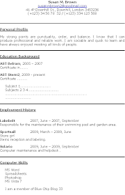 example format of resume resume template bw executive executive