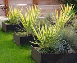 planter box ideas landscaping landscape industrial with turf boxes