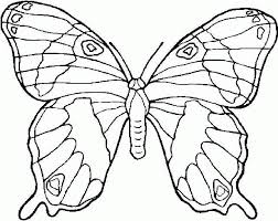 free butterfly printable coloring pages 2016 voteforverde com