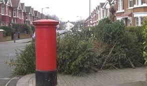 free christmas tree recycling in wandsworth and putney