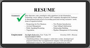 resume professional summary exles exles of resume summary inspirational career summary exle