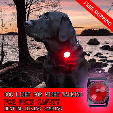dog collar lights waterproof super bright dog collar lights hunting flash l 100m waterproof