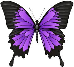 purple butterfly png clip art best web clipart