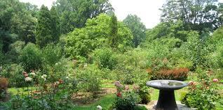 Arboretum by Arboretum Of The Barnes Foundation American Public Gardens