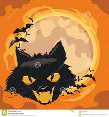 halloween cats background spooky cat with bats and ghosts in classic orange halloween back