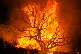 Wildfire Burning Near Me by Massive Wildfire East Of Los Angeles Is Still Raging