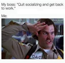 Get Back To Work Meme - my boss quit socializing and get back to work me