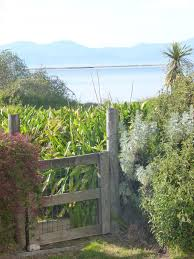 Cottage By The Beach by Cottage By The Beach Motueka New Zealand Booking Com