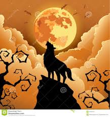 wolf howling at the moon royalty free stock images image 34393119