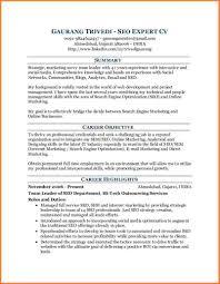 seo expert resume web strategist and seo executive resume samples