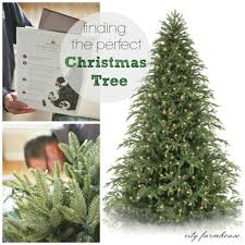 Home Decor Trees by Decorating Interesting Balsam Hill Christmas Trees For Inspiring