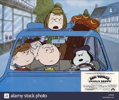 charlie brown thanksgiving 1973 peppermint patty charlie brown charlie stock photos u0026 peppermint
