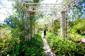 Huntington Botanical Garden by Huntington Gardens Rock The Dress San Diego Wedding Photographers