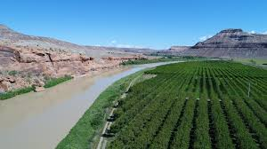 Acreages For Sale by Income Producing Orchard On River For Sale In Western Co U2013 Land For