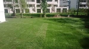 landschaftsbau m nchen rollrasen verlegen münchen m d garten und landschaftsbau gmbh