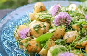 the hungry hounds u2014 herb potato salad