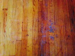 hardwood floor cleaning summerville sc charleston sc