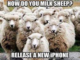 Sheeple Meme - the best iphone memes memedroid