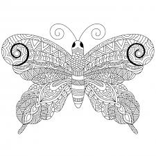 creative zentangle style butterfly with ethnic floral ornaments