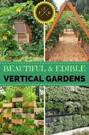 228 best vegetable gardening galore images on pinterest