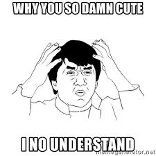Why You So Meme - why you so damn cute i no understand jackie chan meme paint meme