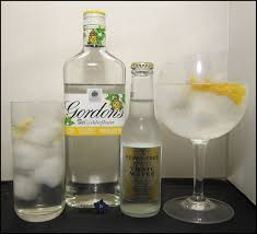 tom collins bottle 2014 gin summer fruit cup
