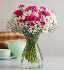 send daisies with best arrangements online lolaflora
