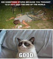 Good Grumpy Cat Meme - grumpy cat meme 2 by jinxxnixx on deviantart