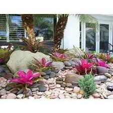 Tropical Rock Garden Tropical Rock Garden Ideas Gardening Flower And Vegetables