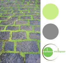 Pantone Color Scheme Cobblestone Freshness Pantone Green Green Colour Palette And