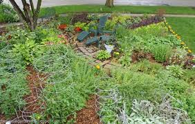 Front Yard Vegetable Garden Ideas Design Ideas For Front Yard Fruit And Vegetable Gardens