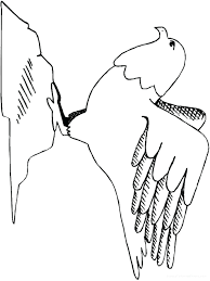 articles with american bald eagle coloring pictures tag bald