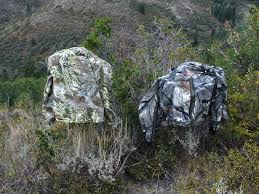 Color Blind Camouflage Test The Diy Hunter What Camo Patterns Work The Best