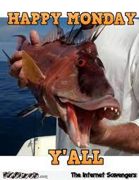 Funny Fish Memes - happy monday y all funny fish meme pmslweb