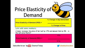 elasticity of demand ped bee business bee lesson youtube