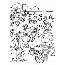 pumpkin patch coloring pages to print murderthestout
