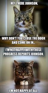 Cat Trap Meme - its a trap funny goblin