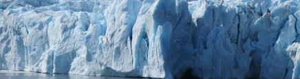 Alaska wildlife tours images Glacier and wildlife explorer tour alaska tour and cruise jpg