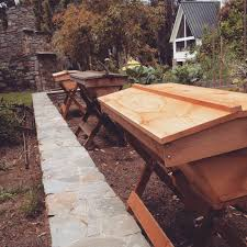 How To Make A Top Bar Beehive Beekeeping Like A Langstroth Vs Top Bar Hive