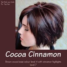 top overcounter hair highlighter 78 best hair stuff images on pinterest hair dos short films and